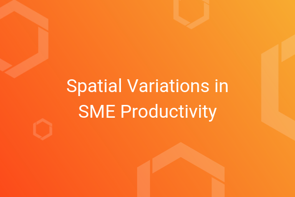 Spatial Variations in SME Productivity.